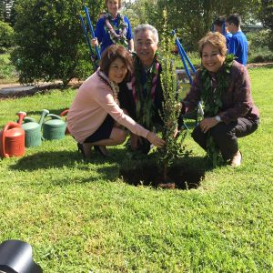 The governor, first lady and Sen. Lorraine Inouye plant an 'ohia tree as a symbol of cultural and environmental awareness