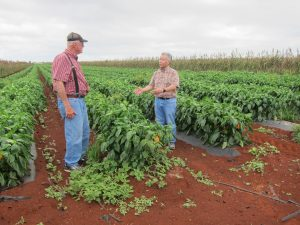 Gov. Ige talks with Larry Jefts, one of the state's largest diversified ag farmers.