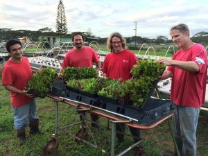 Inmates at Waiawa Correctional Facility work on the prison farm.