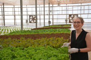 Molly Stanek,senior vice president of Sensei Farms Lana'i,with lettuce from one of their hydroponic greenhouses.