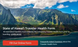 Interisland travelers are encouraged to go to the DOH travel website to submit their form online.